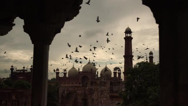 flocks of birds over badshahi mosque, pakistan - atmosphere filter stock videos & royalty-free footage