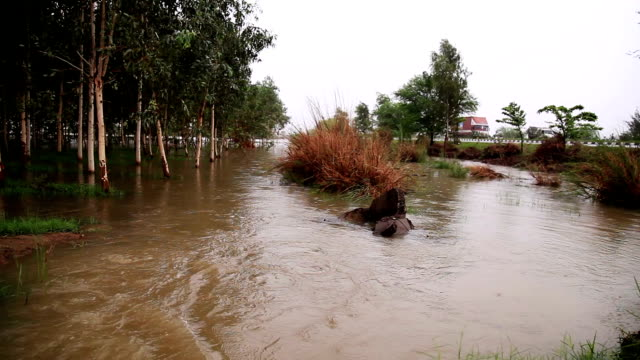 flood during rainy season - flood stock videos & royalty-free footage
