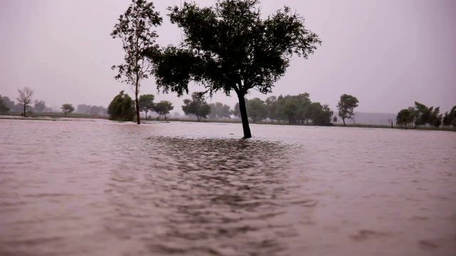 flood during rainy season - flood stock videos & royalty-free footage