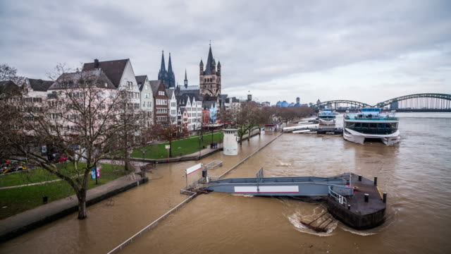 flood in cologne, germany - river rhine stock videos & royalty-free footage