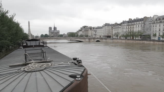 flood in paris, view of marie bridge and notre dame cathedral - saint louis bildbanksvideor och videomaterial från bakom kulisserna