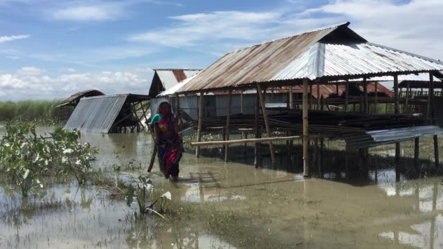 A flood victim woman is carrying her important households in a flood affected village in Gaibandha Bangladesh August 19 2017