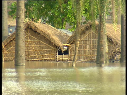 flood water covers a remote village in the indian state of bihar - tetto di paglia video stock e b–roll