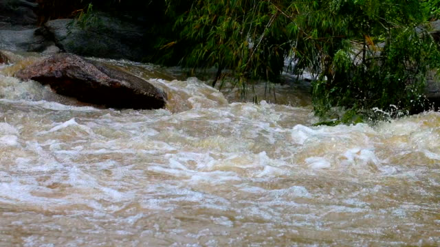 flood water fast flowing down swollen mountain - flood stock videos & royalty-free footage