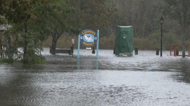 Flood Waters Inundate A Park