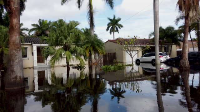 flood waters inundate a residential neighborhood on december 23, 2019 in hallandale, florida. the area received up to 12 inches of rain during an... - フロリダ州点の映像素材/bロール