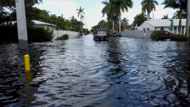 flood waters inundate a residential neighborhood on december 23, 2019 in hallandale, florida. the area received up to 12 inches of rain during an... - hollywood florida stock videos & royalty-free footage