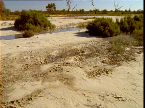 Flood waters pour over dry outback after rains, Innamincka, South Australia