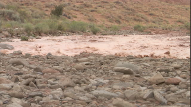 flood waters rush into a dry stream bed. available in hd. - riverbed stock videos & royalty-free footage