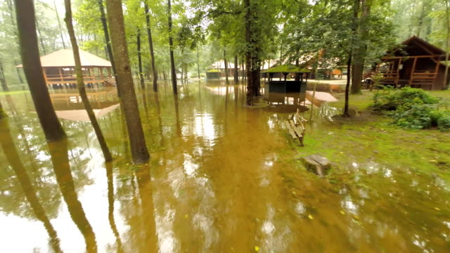 AERIAL Flooded Areas In The Forest