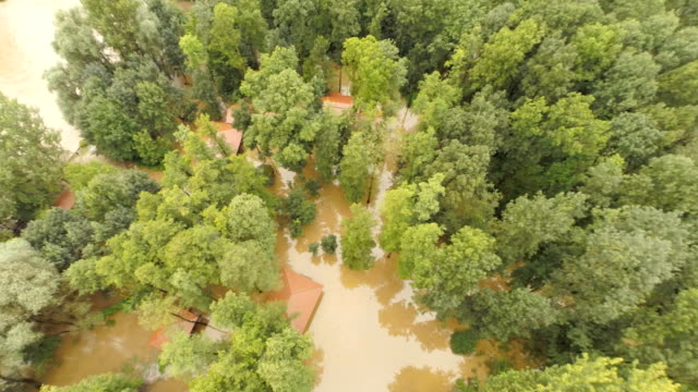 AERIAL Flooded Houses In The Forest