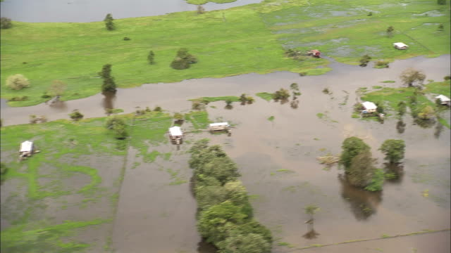 flooded houses on grasslands in the amazon. available in hd. - america latina video stock e b–roll