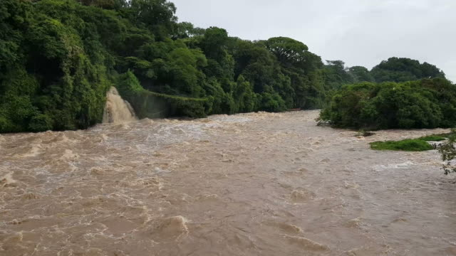 flooded of muddy water. rapid river - torrential rain stock videos and b-roll footage
