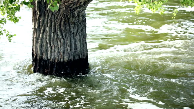 flooded rivers.  texas, usa.  severe storms cause flooding. rushing water. - overflowing stock videos & royalty-free footage