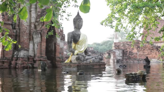 a flooded wat mahathat in ayutthaya's historic park going through by boat thailand flood gv at wat mahathat on october 21 2011 in ayutthaya thailand - bronek kaminski stock videos & royalty-free footage