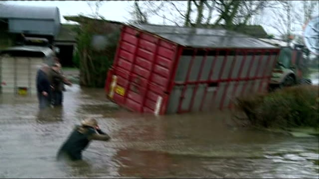 flooding in burrowbridge: cattle lorry rescue; england: somerset: burrowbridge: ext tracking shot along on through flood waters / overturned cattle... - cattle stock videos & royalty-free footage