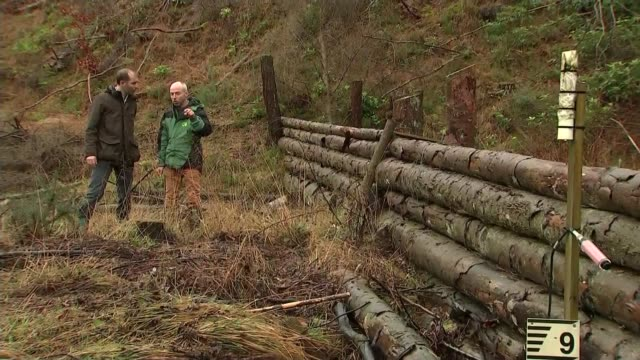 natural flood protection project in north yorkshire north yorkshire general view of north york moors reporter to camera fastflowing river water tilt... - stream stock videos & royalty-free footage