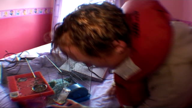 report on one family in south yorkshire int clair inside her flooded home and finds hamster ok in his cage in bedroom and comments sot close shot... - south yorkshire stock videos and b-roll footage