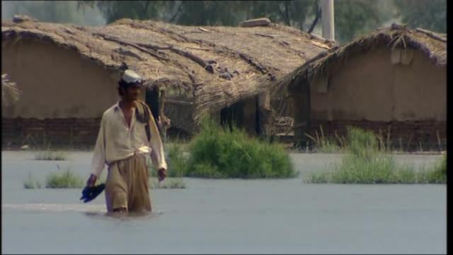 vídeos y material grabado en eventos de stock de floods surge further south / more heavy rain expected; pakistan: punjab: mianwali: ext man wading through flooded crop / farm fields - panyab pakistán
