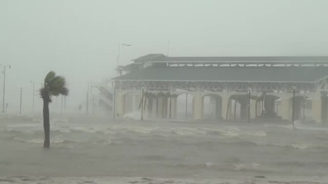 floodwater rushes past buildings and palm trees as hurricane isaac hits gulfport, mississippi. - tropical storm stock videos & royalty-free footage