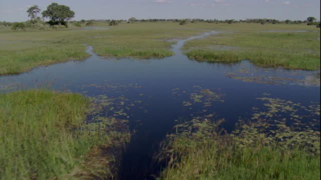 vídeos y material grabado en eventos de stock de floodwaters flow into the savannas of okavango delta, botswana during the wet season. available in hd. - delta de okavango