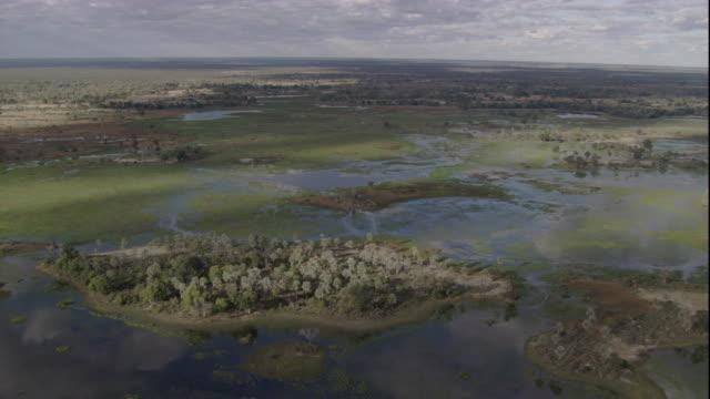 vídeos y material grabado en eventos de stock de floodwaters surround an island in the okavango delta of botswana during the wet season. available in hd. - delta de okavango