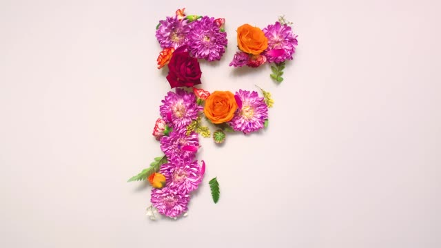 Floral letter F bouncing and splattering on beige and white backgrounds