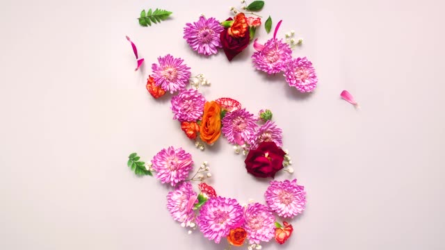 vídeos de stock e filmes b-roll de floral letter s bouncing and splattering on beige and white backgrounds - rosa flor