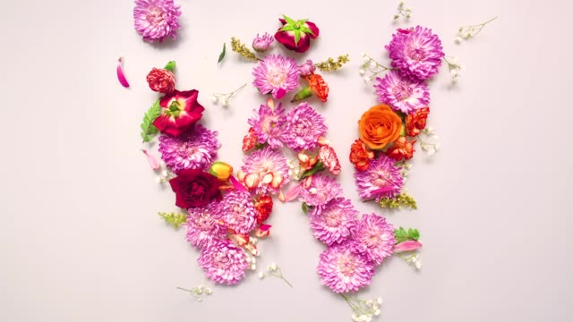 floral letter w bouncing and splattering on beige and white backgrounds - bouquet stock videos & royalty-free footage
