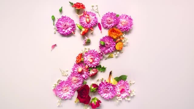 floral letter z bouncing and splattering on beige and white backgrounds - stor bokstav bildbanksvideor och videomaterial från bakom kulisserna