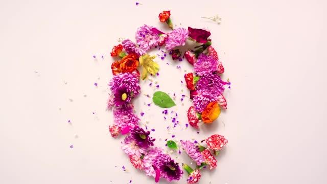vídeos de stock, filmes e b-roll de floral number 0 bouncing and splattering on beige and white backgrounds - bouquet