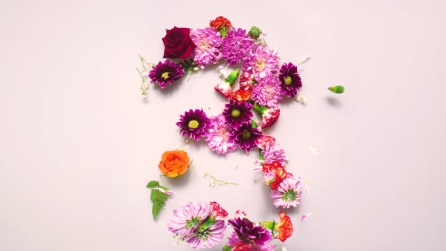 floral number 3 bouncing and splattering on beige and white backgrounds - 数字の3点の映像素材/bロール
