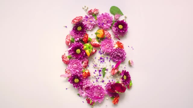 floral number 6 bouncing and splattering on beige and white backgrounds - 数字の6点の映像素材/bロール