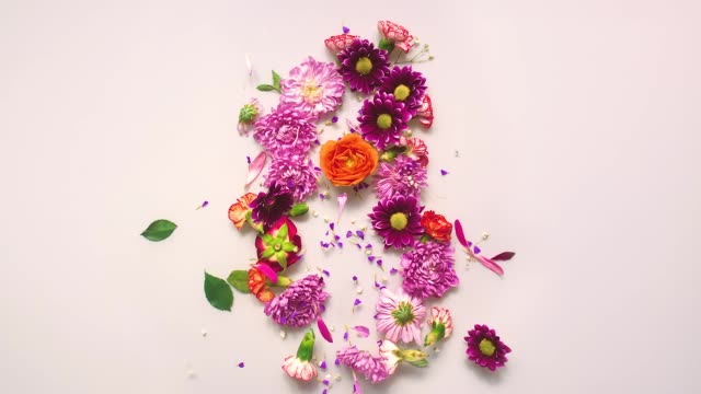 Floral number 8 bouncing and splattering on beige and white backgrounds