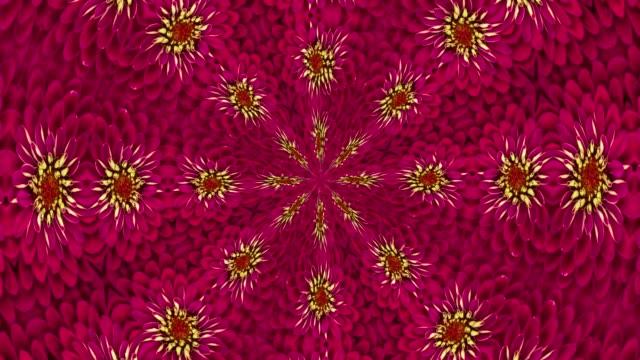 Floral Symmetric Loop Ready Pattern