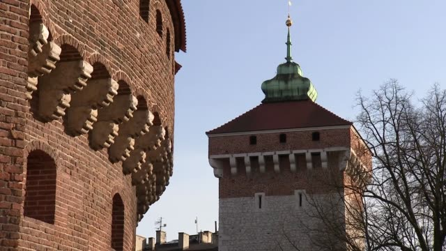 florian's gate and barbican in cracow - zweig stock-videos und b-roll-filmmaterial