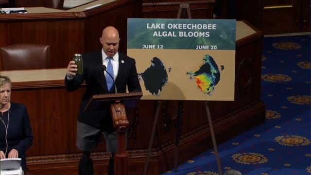florida congressman brian mast holds up a glass of water discharge from the florida lake saying you cannot see is how it disgusting it was and could... - algae stock videos & royalty-free footage