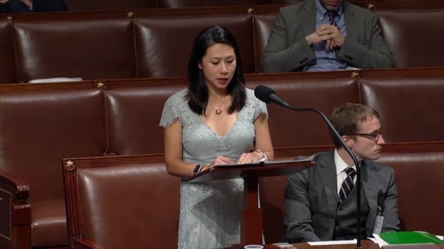 florida congresswoman stephanie murphy says in debate on the annual intelligence authorization that when americans are already inundated online by... - politician stock videos & royalty-free footage