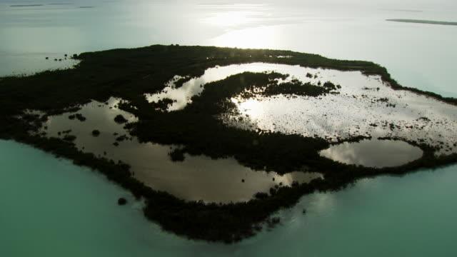 USA, Florida : Everglades