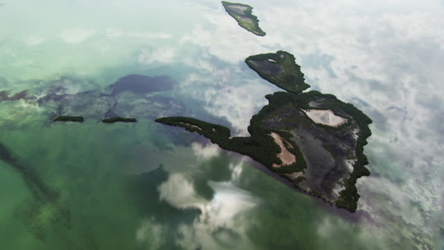 usa, florida : everglades - miami dade county stock videos & royalty-free footage
