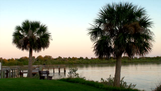 florida intracoastal - orlando florida stock videos & royalty-free footage