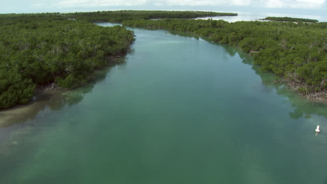 usa, florida : islands around miami - gulf coast states stock-videos und b-roll-filmmaterial