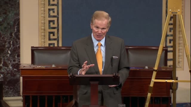 florida senator bill nelson says that an ar15 is a weapon for killing and its understanding is among the american people that they have no place on... - controllo delle armi da fuoco video stock e b–roll