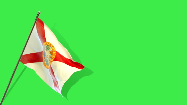 florida state flag rising - florida us state stock videos and b-roll footage