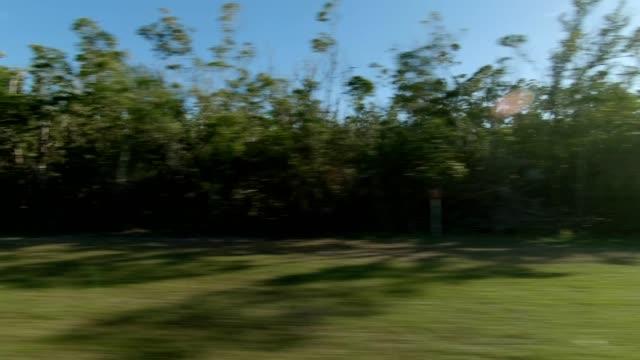vidéos et rushes de florida xv série synchronisé côté droit plaque de processus de conduite - part of a series