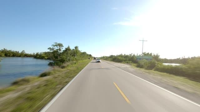 florida xvi synchronierte serie rear view driving prozessplatte - bewegliches hintergrundbild stock-videos und b-roll-filmmaterial