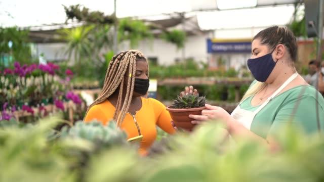 vídeos y material grabado en eventos de stock de floristería y cliente comprando en una tienda de jardín con una máscara facial - lugar de comercio