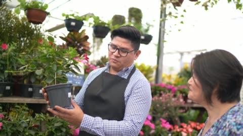 stockvideo's en b-roll-footage met bloemist en klant kopen op kleine bedrijven bloemenwinkel eigenaar - klanten georiënteerd