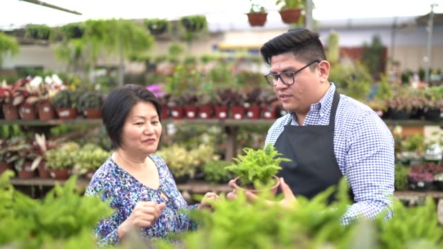 florist and customer buying on small business flower shop owner - customer focused stock videos & royalty-free footage