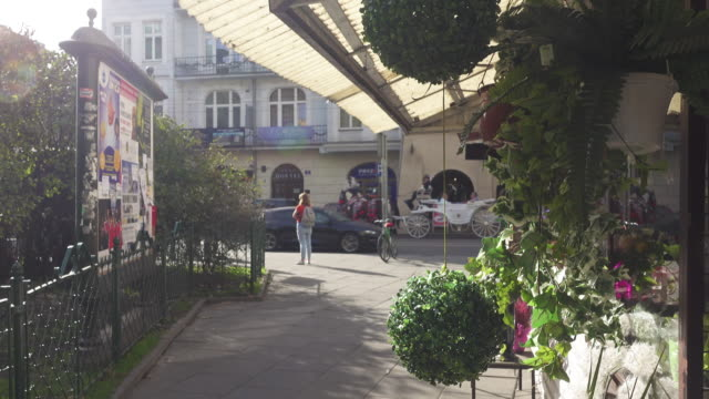 florist garden shop at krakow old district - flower shop stock videos and b-roll footage